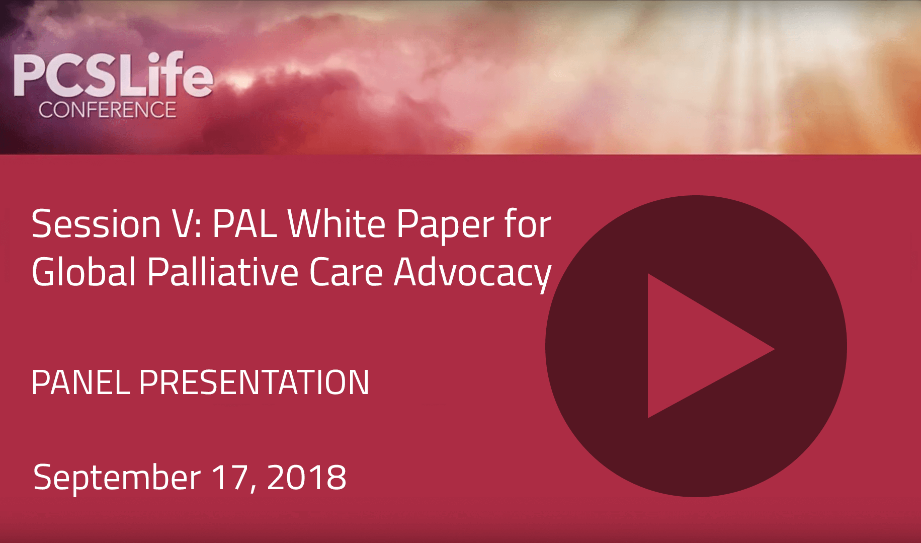 Session Five: PAL White Paper for Global Palliative Care Advocacy